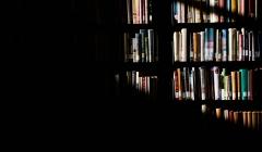 Biblioteken, representationen och vithetsnormen